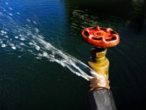 Water Damage Companies Alpharetta GA