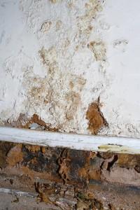 Mold Remediation Sandy Springs GA