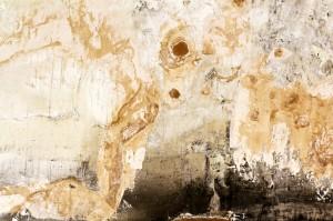 Mold Removal and Remediation Atlanta GA