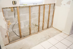 Mold Removal Service Sandy Springs GA