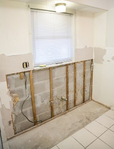 Mold Inspection and Removal Atlanta GA