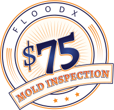 Mold Price Atlanta